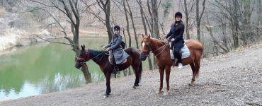 Конный спорт в Сербии