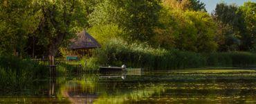 Царская  бара - Царский пруд
